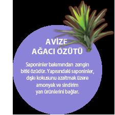 AVİZE AĞACI ÖZÜTÜ. Saponinler bakımından zengin bitki özüdür. Yapısındaki saponinler, dışkı kokusunu azaltmak üzere amonyak ve sindirim yan ürünlerini bağlar.
