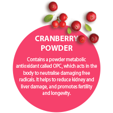 CRANBERRY POWDER. Contains a powder metabolic antioxidant called OPC, which acts in the body to neutralise damaging free radicals. It helps to reduce kidney and liver damage, and promotes fertility and longevity.