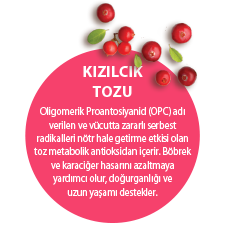 KIZILCIK TOZU. Oligomerik Proantosiyanid (OPC) adı verilen ve vücutta zararlı serbest radikalleri nötr hale getirme etkisi olan toz metabolik antioksidan içerir. Böbrek ve karaciğer hasarını azaltmaya yardımcı olur, doğurganlığı ve uzun yaşamı destekler.