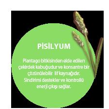 PİSİLYUM. Plantago bitkisinden elde edilen çekirdek kabuğudur ve konsantre bir çözünülebilir  lif kaynağıdır. Sindirimi destekler ve kontrollü enerji çıkışı sağlar.